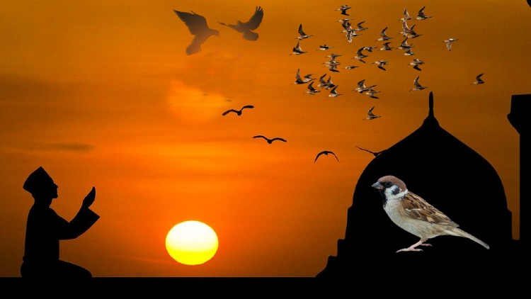 پرندوں کی چہچہاہٹ دراصل فطرت کی دلکش آواز ہے